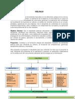 CURSO DE CALCULO.doc