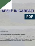 Carpati_Ape
