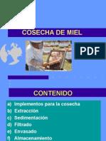 CosechaMiel.ppt