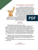 133231475-Leacuri-Indiene-Cu-Plante-Aromate.doc