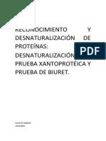 INFORME DE LABORATORIO DE PROTEÍNAS