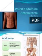 Pared Abdominal Anterolateral