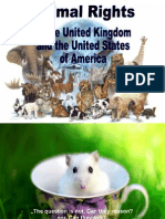 Animal Rights in the UK and the USA