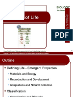 01 lecture animation ppt