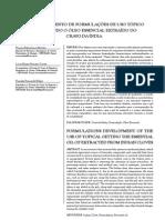 Formulação com OE Cravo.pdf
