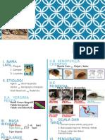 Pes dan EPidemiologi nya tahun 2014