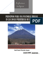 ENSAYO Pastoral Urbana