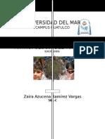Antropología Del Turismo en Países en Desarrollo