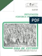 Fertilizacion Fosforica Del Arroz