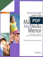 Sicomotricidad Para Sala Cuna Mayor Nivel Medio Menor Modulo 6