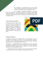 Informacion Basica del Petroleo