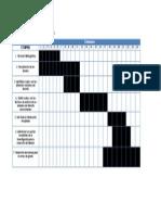 Cronograma de Actividades Areas de Grado