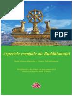 Gheshe Rabten Rinpoche Gonsar Tulku Rinpoche Aspectele Esentiale Ale Buddhismului