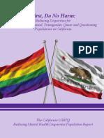 CRDP LGBTQ Report.pdf