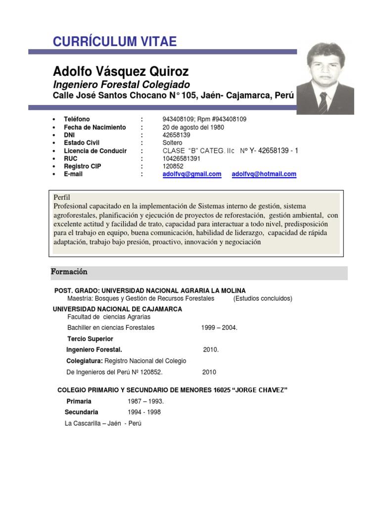 Famoso Objetivo De Currículum Interno De Ingeniería Friso - Ejemplo ...