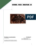 Cercetarea Pietei Tabletelor de Ciocolata