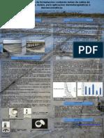 Poster Desenvolvimento Formulacao contendo lamas de aveiro III CIBAP.pptx