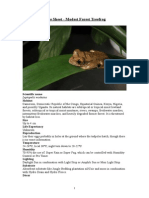 Care Sheet - Modest Forest Treefrog