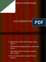 Katabolisma Protein & Nitrogen Asam Amino(3)