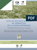 Guia de Campo - Guia de Reconocimiento y Manejo de Pastos de La Pampa Deprimida (Kit de Extension)
