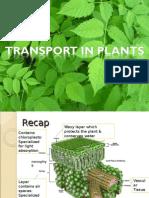 transportinplantslides-100801203843-phpapp02.ppt