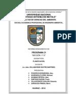 Trabajo Monografico_Programa 21 (1).pdf