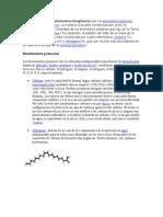 Los Bioelementos o Elementos Biogénicos Son Los Elementos Químicos