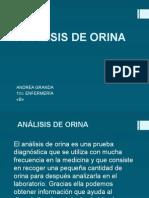 anlisisdeorina-140212094044-phpapp02