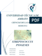 Micro Streptococcus Pyogenes