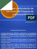 Enfoque y Articulaciones TPP_EDUARDO MERCADO