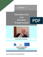 Introduccion_a La_Gestion_Empresarial - Pedro Rubio Dominguez