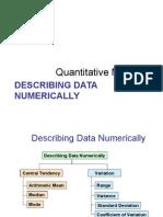 Describing Numerical