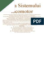 Profilaxia sistemului Locomotor