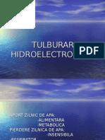 Tulburari hidro-electrolitice