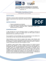 Protocolo Vigepi Chikungunya Cne-2014