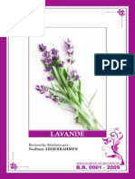 01+-+LAVANDE.pdf