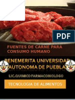 Carne - Tecnologia de Alimentos