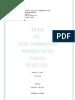 Tipos de Contaminación Ambientales_causas_efectos