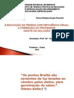 A EDUCAÇÃO DA PESSOA COM DEFICIÊNCIA VISUAL