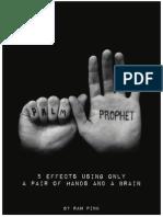 Palm+Prophet+by+Ran+Pink.pdf