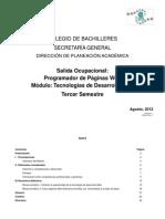 Programa Tecnologías Desarrollo Web