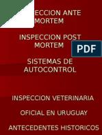 Insp. A.M. P.M. y métodos de autocontrol.ppt