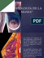 Patologia de La Mama