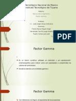 Factor Gamma