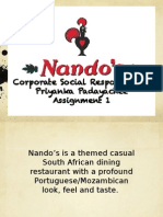 nandos csr projects