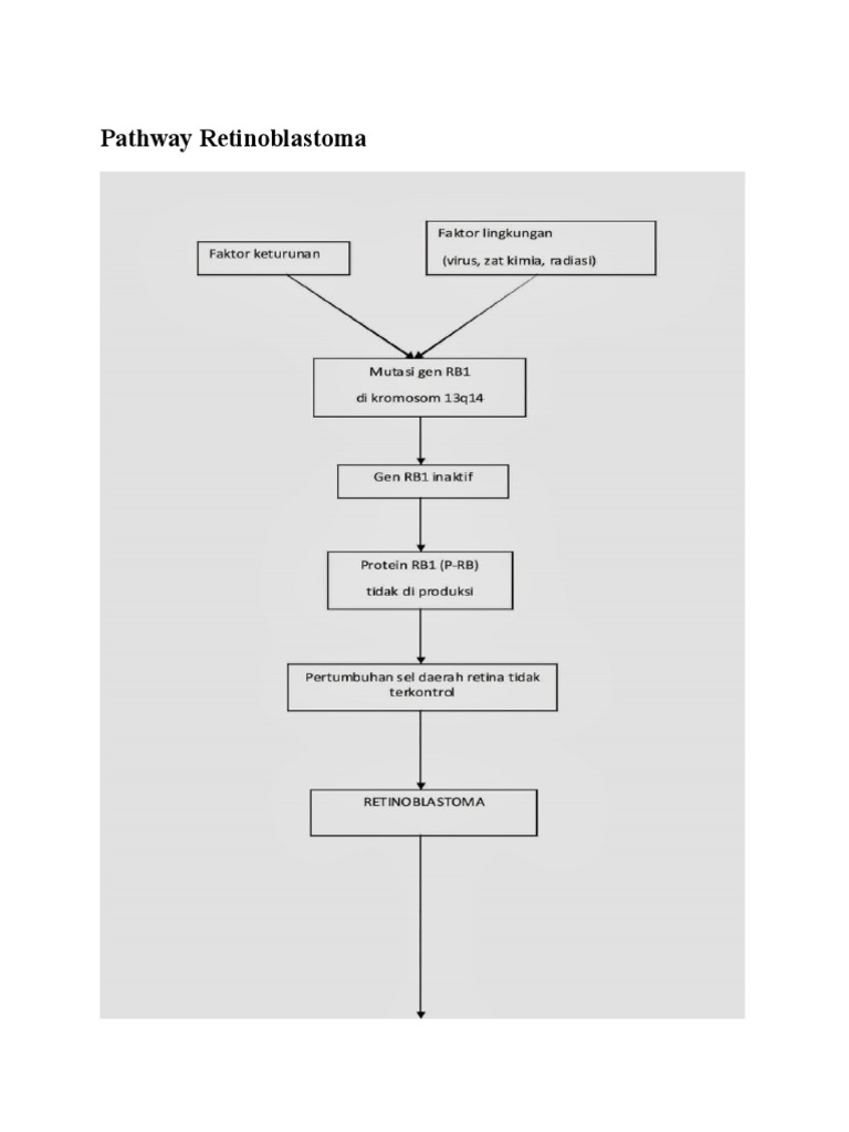 Pathway retinoblastoma 1536515988v1 ccuart Images