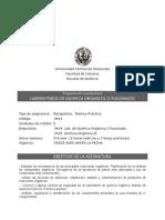 Programa Lab. Org II Rev PN y MR 05-2014