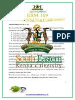 AFN 305 Environmental Health.docx