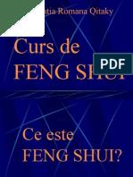 Curs FS