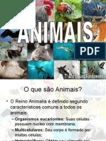 OFICINA DE CIENCIAS ANIMAIS.ppt